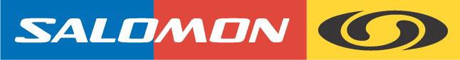 Salomon Group - История бренда