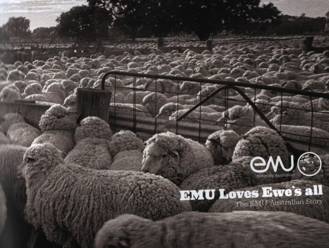 Обувь Emu Australia, тепло зимой как летом.
