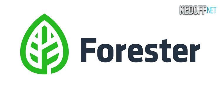 Новые мужские мокасины Forester