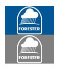 Forester Rain