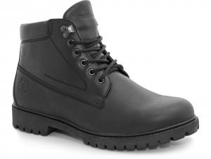 Чоловічі черевики Forester BlackBerry 77751-27 На байку