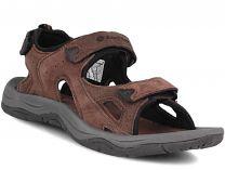 Мужские сандалии Lotto Sahara Iii S2137   (тёмно-коричневый)