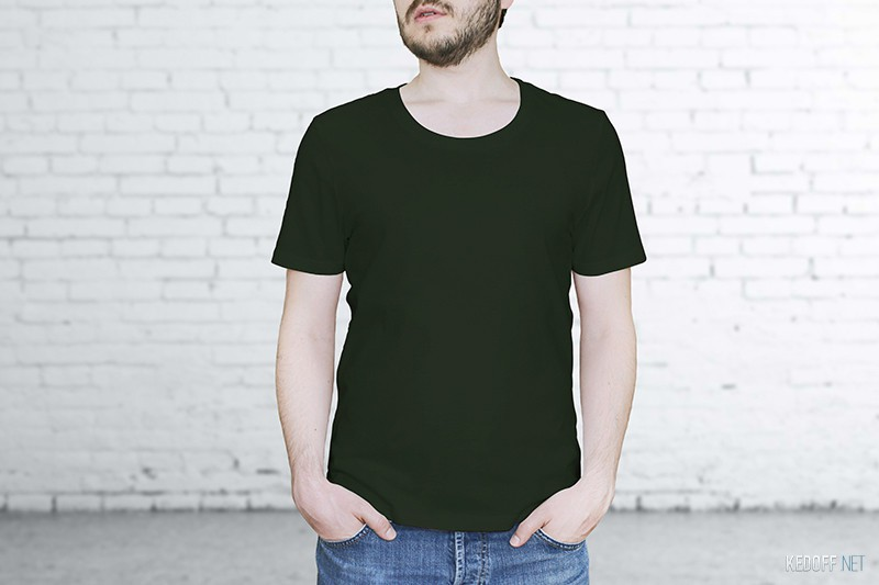 Купить American T-shirt 209-7TH