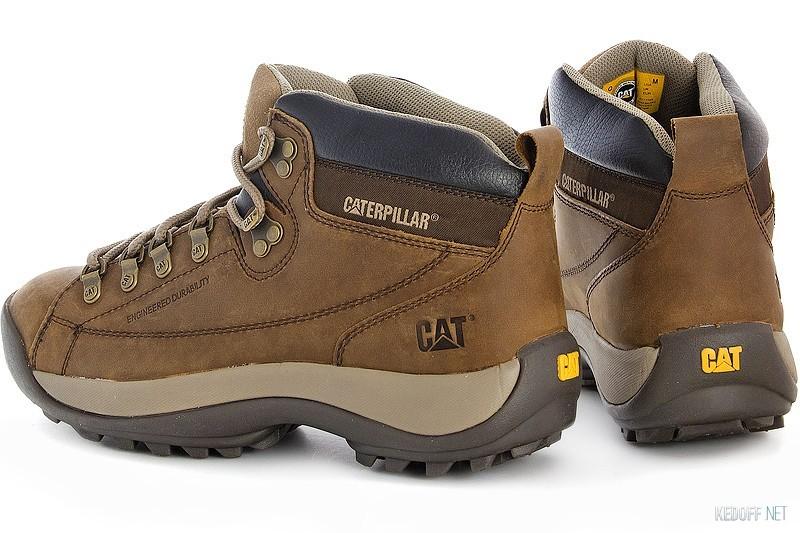 CAT 717795