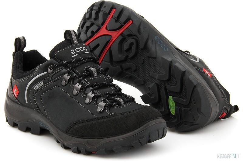 453a03a2fd5e Ecco 810004-52570 в магазине обуви Kedoff.net - 9075