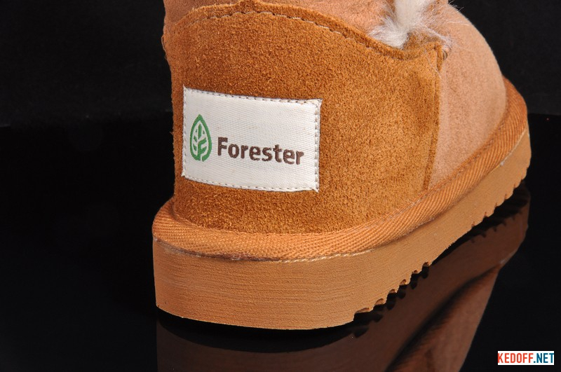 Forester 51003 - 1052-1