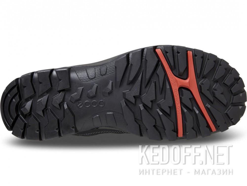 Доставка Мужские ботинки Ecco Xpedition Gore-Tex III 811164-53859