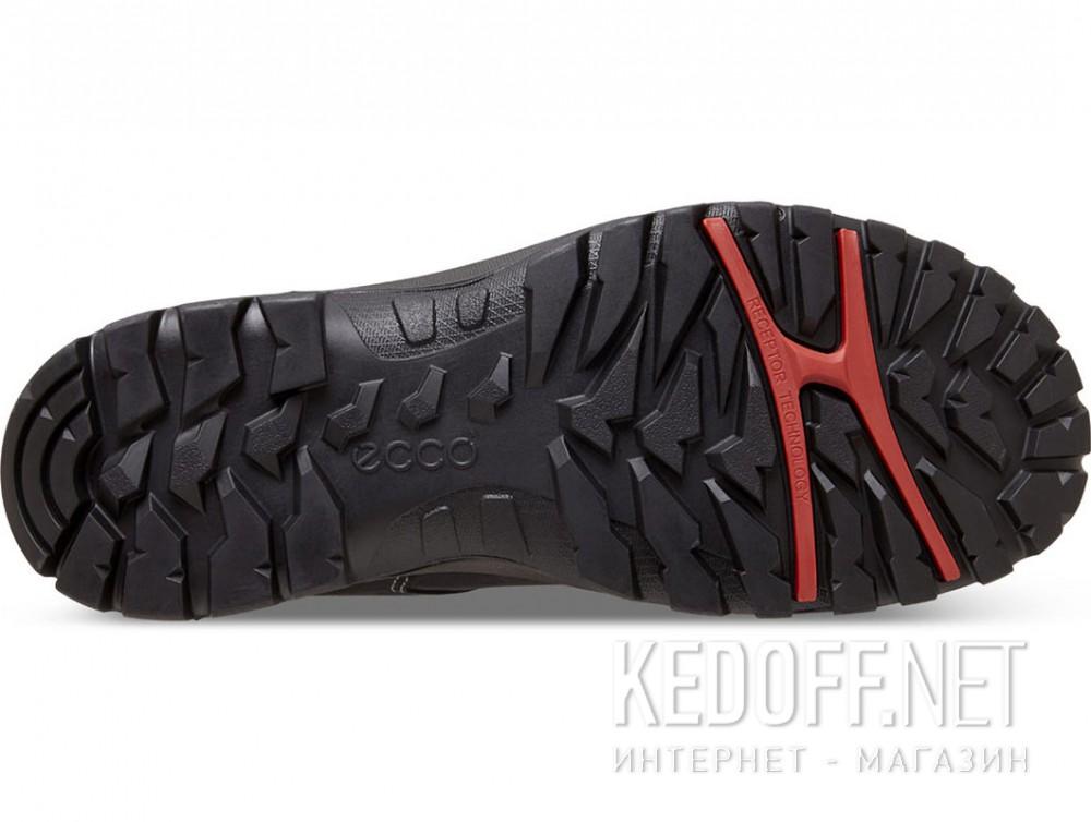 Доставка Мужские кроссовки Ecco Xpedition Gore-Tex 811254-02001   (чёрный)