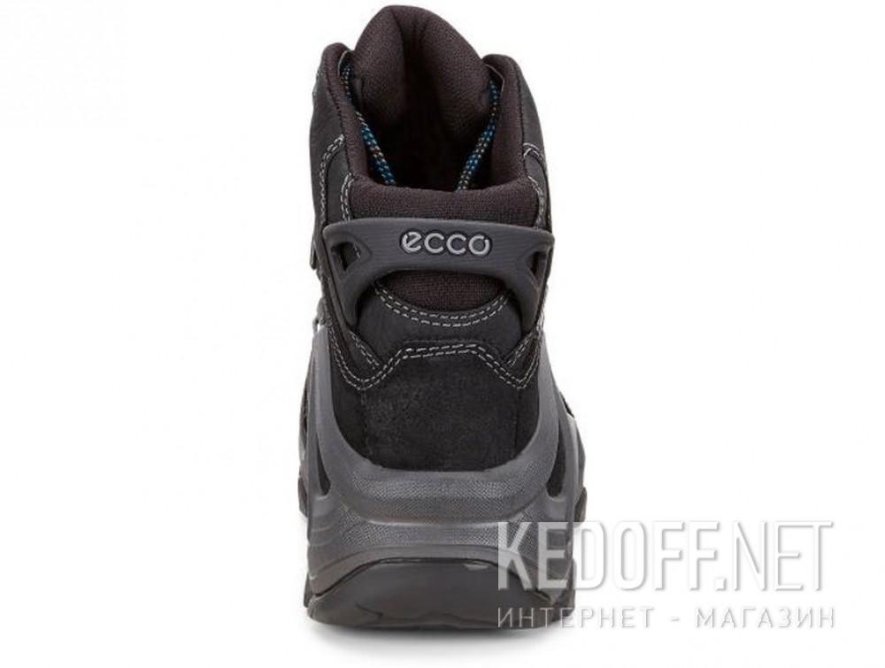 Мужские ботинки Ecco Terra EVO 826504-51052   описание