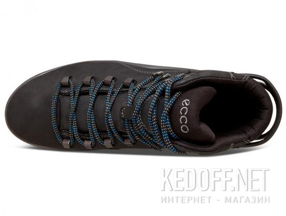 Цены на Мужские ботинки Ecco Terra EVO 826504-51052