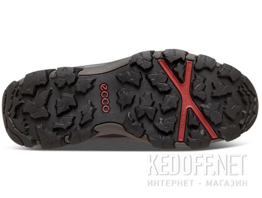 Мужские ботинки Ecco Terra EVO 826504-51052   все размеры
