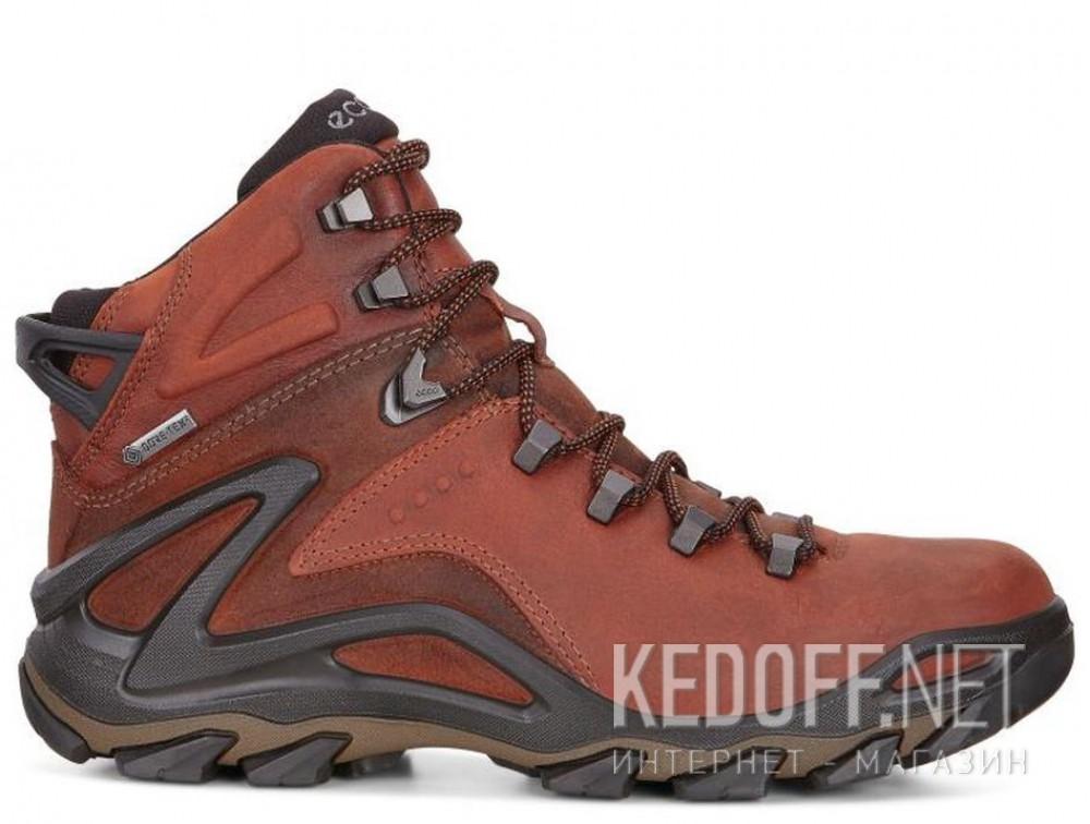 Мужские ботинки Ecco Terra EVO 826504-52358    купить Киев