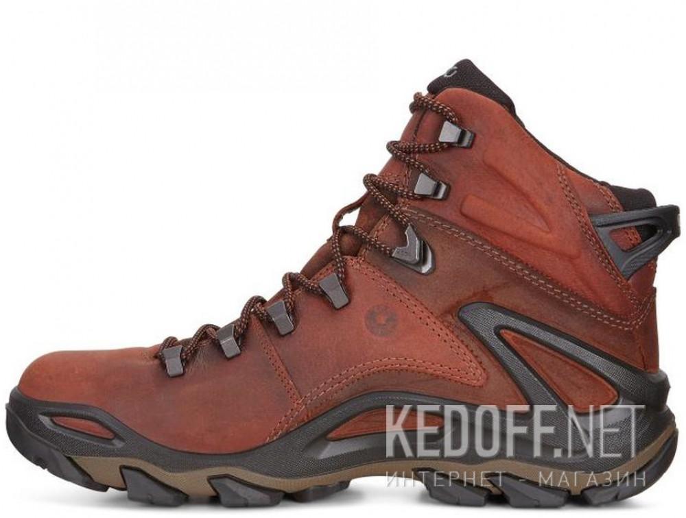 Оригинальные Мужские ботинки Ecco Terra EVO 826504-52358