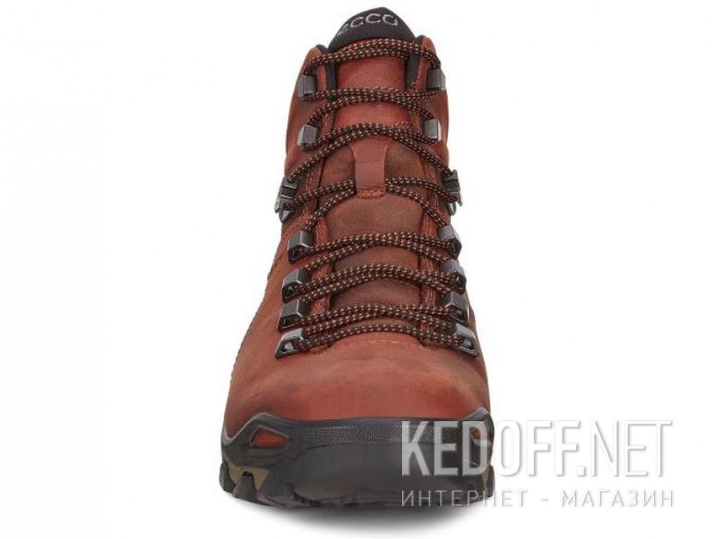 Мужские ботинки Ecco Terra EVO 826504-52358    описание