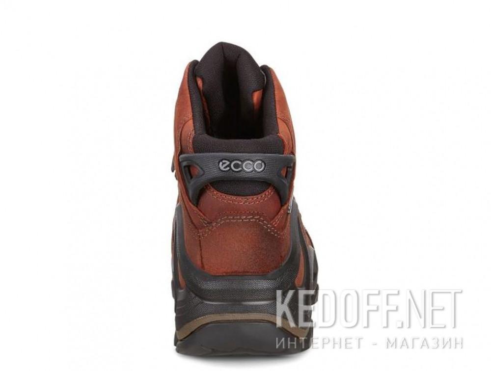 Цены на Мужские ботинки Ecco Terra EVO 826504-52358