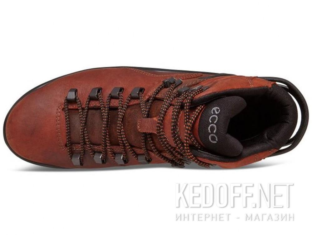 Мужские ботинки Ecco Terra EVO 826504-52358    все размеры