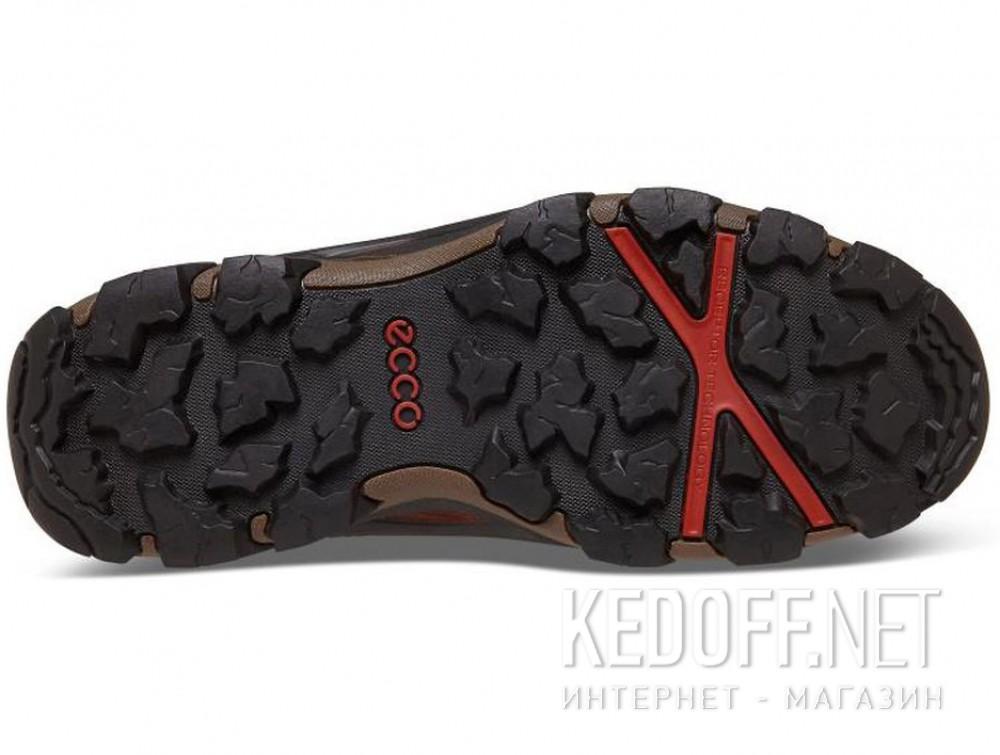 Доставка Мужские ботинки Ecco Terra EVO 826504-52358