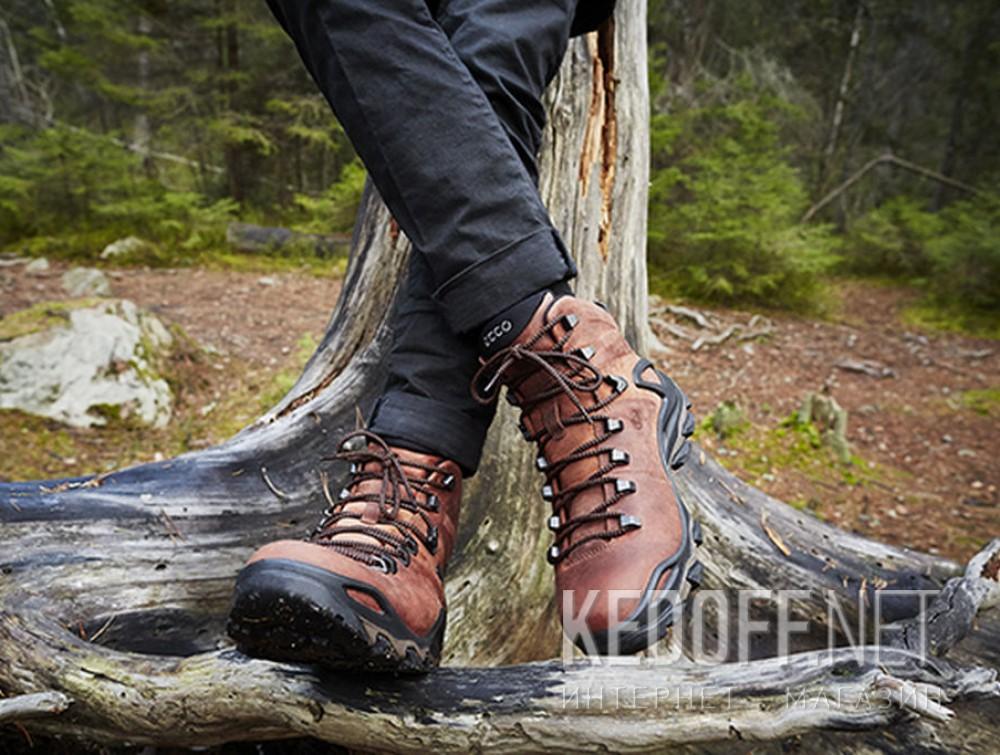Мужские ботинки Ecco Terra EVO 826504-52358    доставка по Украине