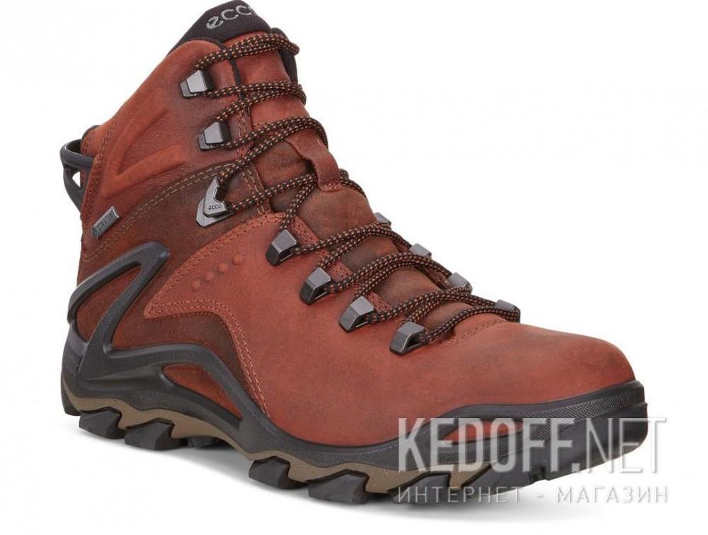 Купить Мужские ботинки Ecco Terra EVO 826504-52358