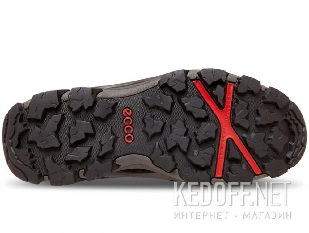 Доставка Мужские ботинки Ecco Terra EVO Gore-Tex 826524-51052