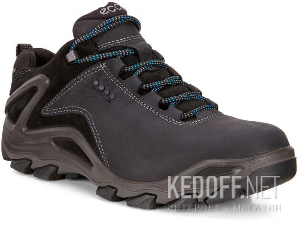 Купить Мужские ботинки Ecco Terra EVO Gore-Tex 826524-51052