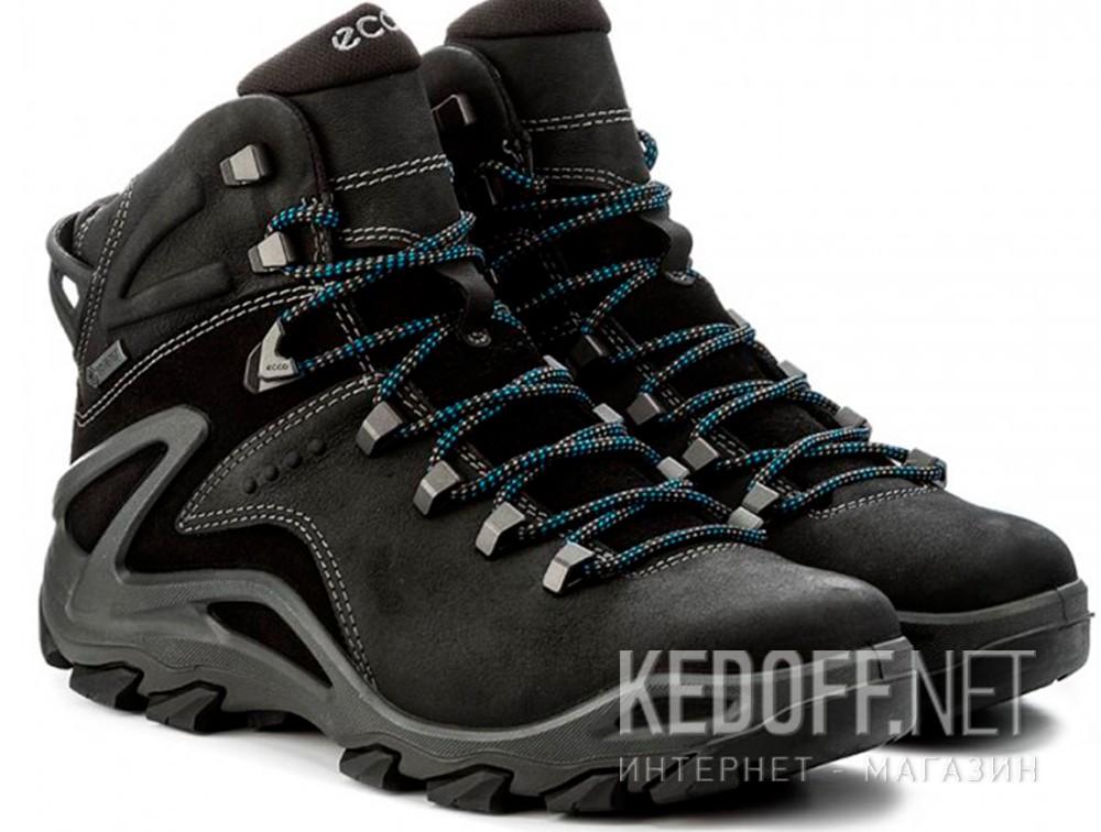 Мужские ботинки Ecco Terra EVO 826504-51052   купить Украина