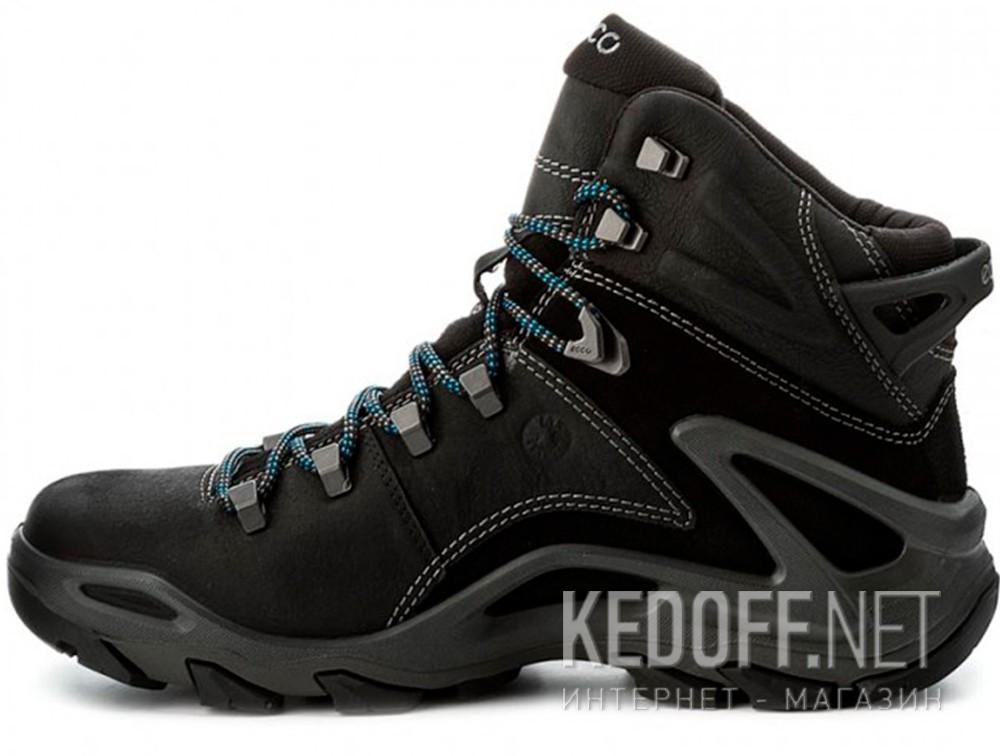 a7e9348e823792 Чоловічі черевики Ecco Terra EVO 826504-51052 в магазині взуття ...