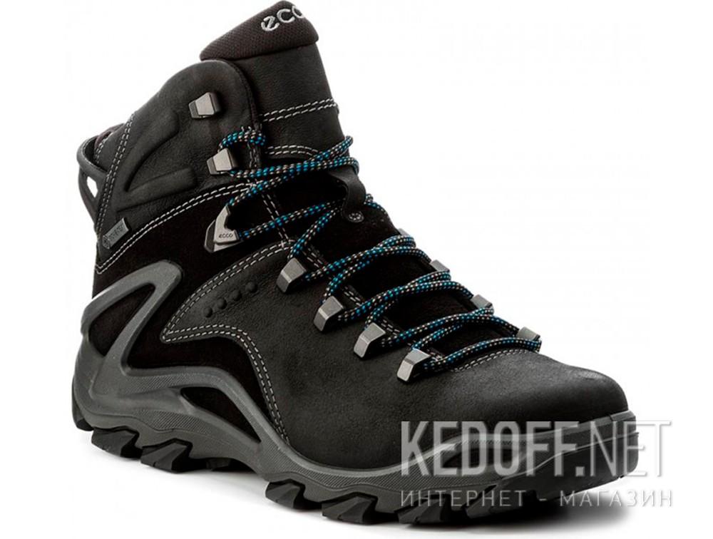 Мужские ботинки Ecco Terra EVO 826504-51052 в магазине обуви Kedoff ... c37872c3b17