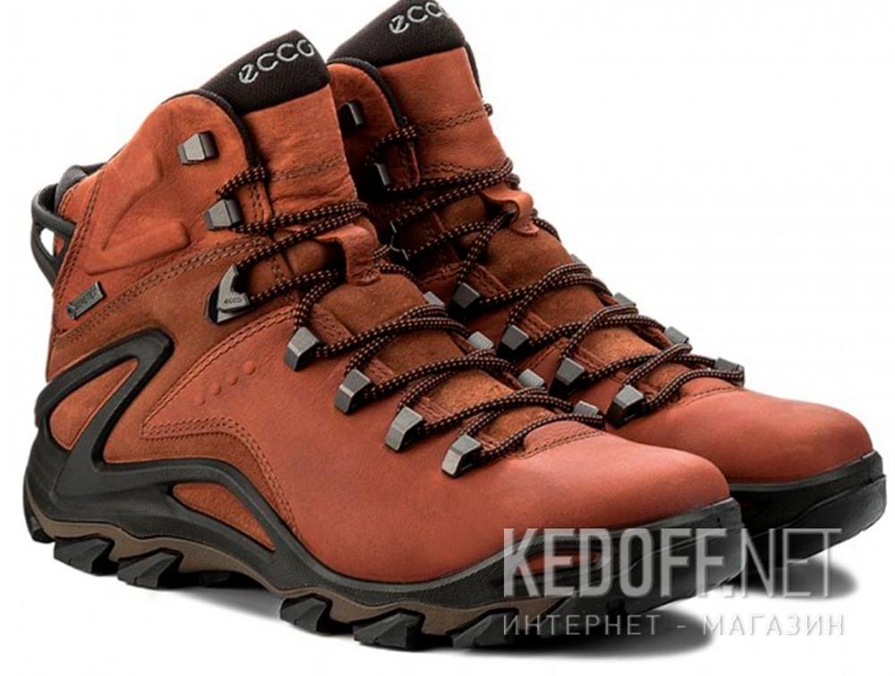 Мужские ботинки Ecco Terra EVO 826504-52358    купить Украина