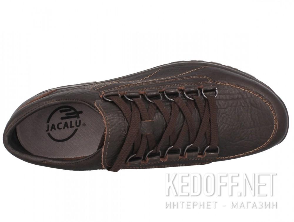 Мужские ботинки Forester 12031-V11   (тёмно-коричневый) описание