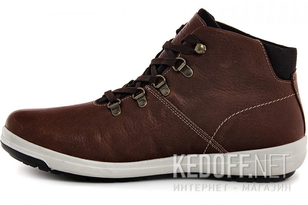 Forester 15021-V23