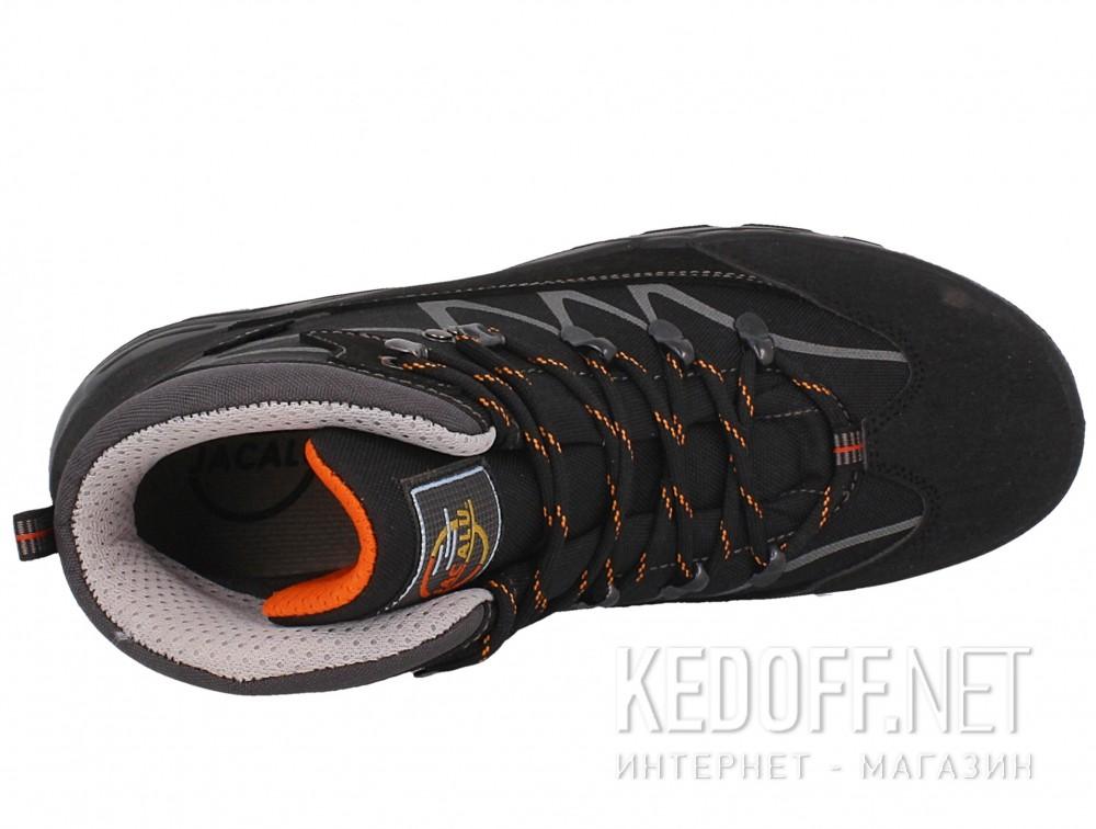 Мужские ботинки Forester 3696-V32   (чёрный) описание