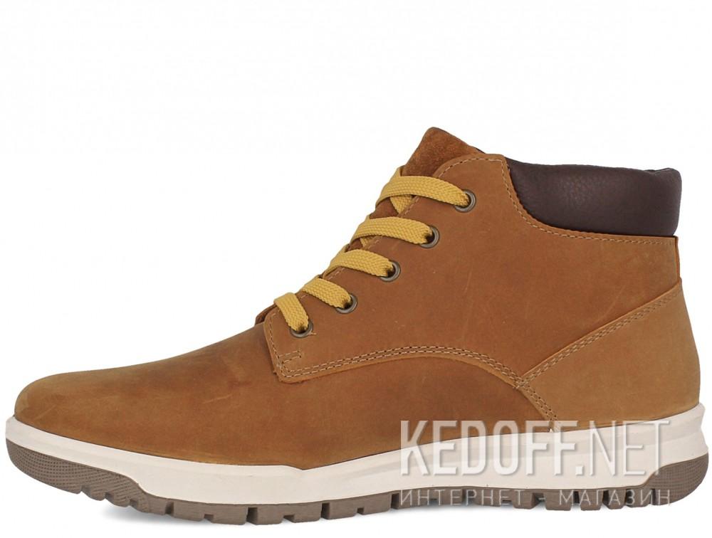 Ботинки Forester 4255-V1 унисекс   (коричневый) купить Киев