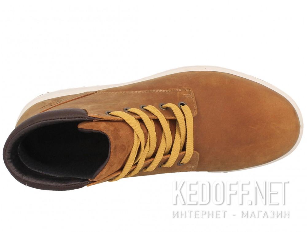 Оригинальные Ботинки Forester 4255-V1 унисекс   (коричневый)