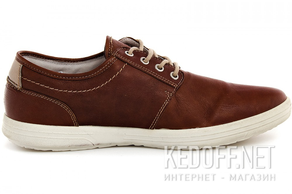Forester 4903-V5