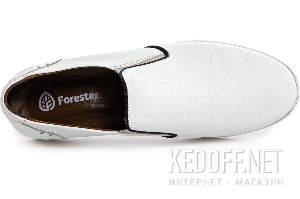 Forester 8265-213 DT