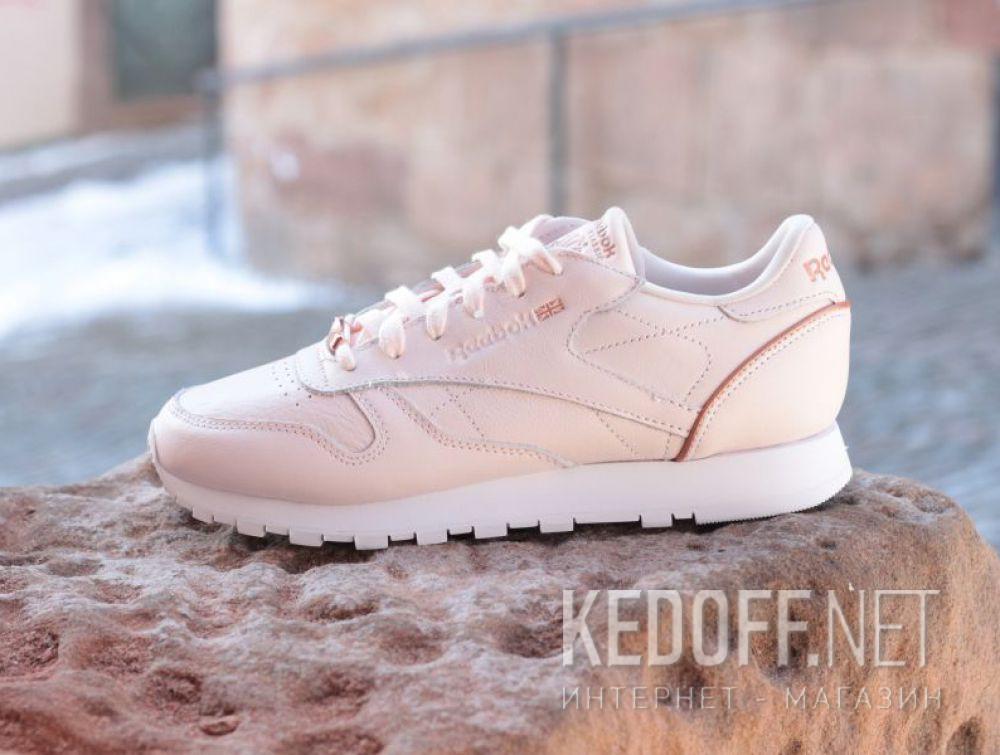 Shop Women s sportshoes Reebok Cl Lthr Hw BS9880 at Kedoff.net - 27977 2b6a41937e58