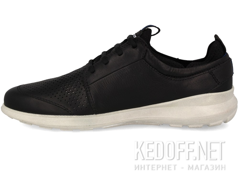ebbd7bb0b0fb Shop Men s Ecco running shoes Transit 534804-02001 (Black) at Kedoff ...