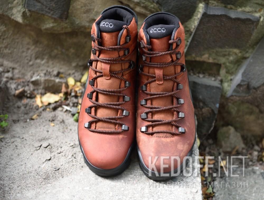 Мужские ботинки Ecco Terra EVO 826504-52358    Фото 12