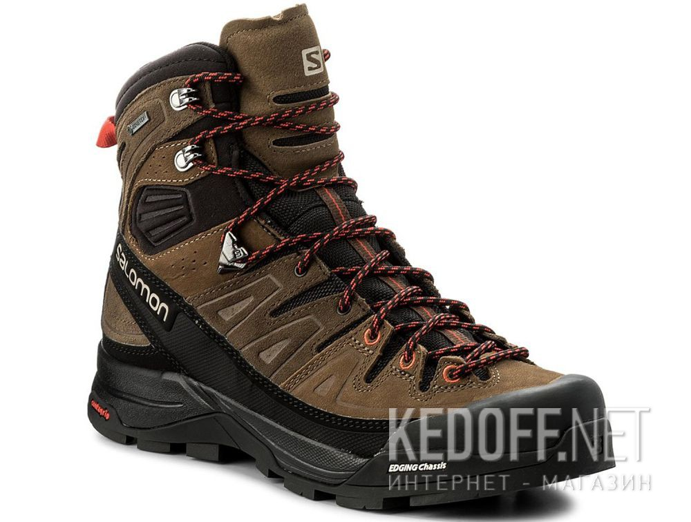 Купить Мужские ботинки Salomon X Alp High Ltr Gore-Tex 401623