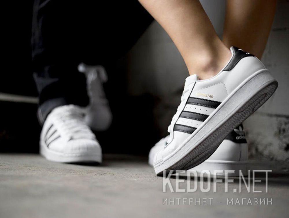 Мужские кроссовки Adidas Superstar C77124 все размеры