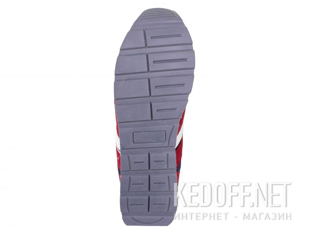 Мужские кроссовки Alpine Crown ACS-200105-001 описание