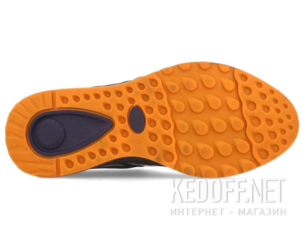 Мужские кроссовки Forester Danner Low 28812-2774 все размеры
