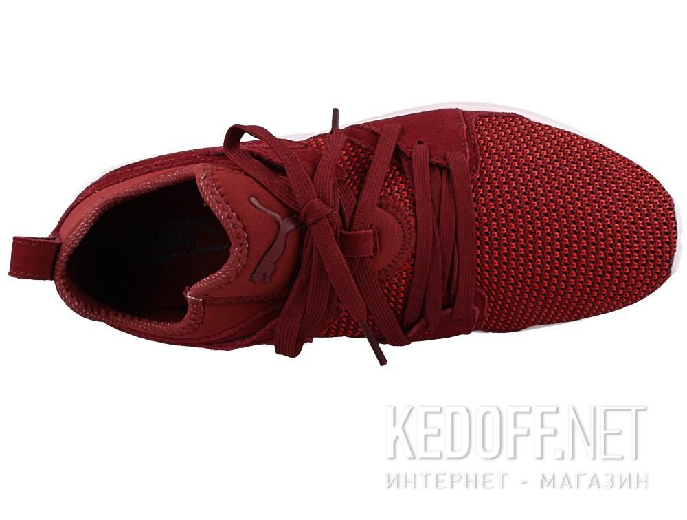 Мужские кроссовки Puma Blaze Of Glory 364128-02   (бордовый) все размеры