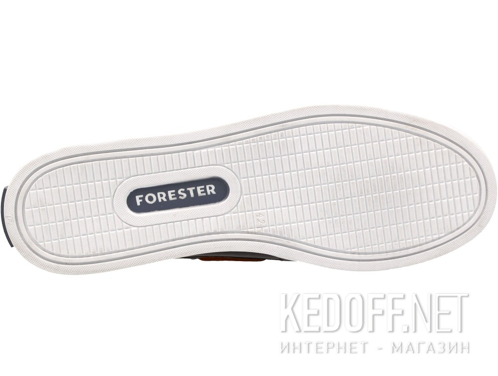 Forester 020216-45